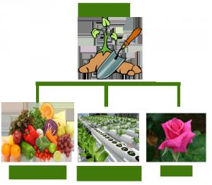 garden chart